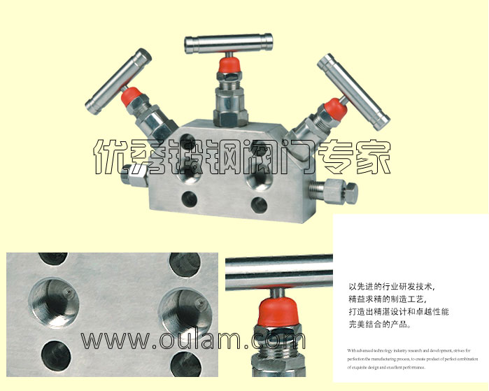 SS-V5NVF8-FL_04.jpg
